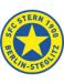 Steglitzer FC Stern 1900